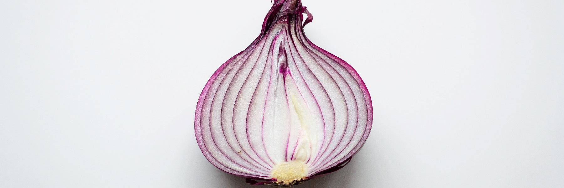 red onion slider image